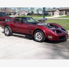1981 Chevrolet Corvette for sale 101363195