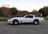 1981 Chevrolet Corvette Coupe for sale 101411959