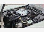 1981 Chevrolet Corvette for sale 101547328