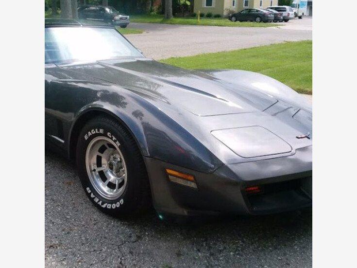 1981 Chevrolet Corvette for sale 101586785