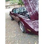 1981 Chevrolet Corvette for sale 101586866
