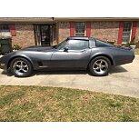 1981 Chevrolet Corvette for sale 101587151