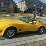 1981 Chevrolet Corvette for sale 101587280
