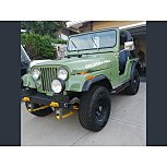 1981 Jeep CJ 5 for sale 101482400