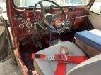 1981 Jeep CJ 7 for sale 101601708
