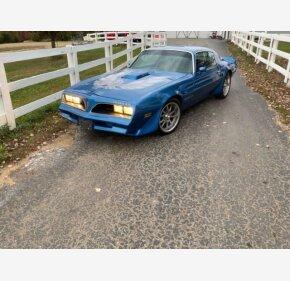 1981 Pontiac Firebird for sale 101396753