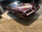 1981 Pontiac Firebird Trans Am for sale 101495237