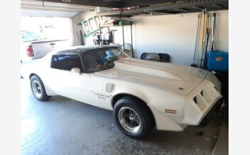 1981 Pontiac Firebird Trans Am Turbo Special for sale 101599432