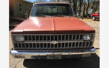 1982 Chevrolet C/K Truck 2WD Regular Cab 2500 for sale 101121525
