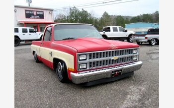 1982 Chevrolet C/K Truck Silverado for sale 101437499
