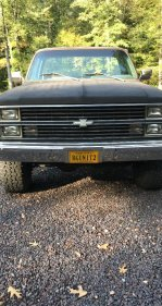 1983 Chevrolet C/K Truck 4x4 Regular Cab 1500 for sale 101270311