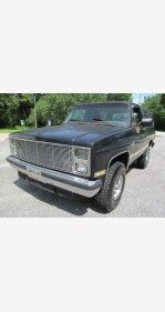 1984 Chevrolet Blazer for sale 101351353