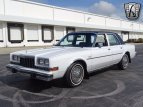 1984 Dodge Diplomat for sale 101467041