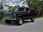 1984 Ford Bronco for sale 101560417
