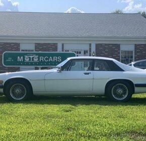 1984 Jaguar XJS V12 Coupe for sale 101240675