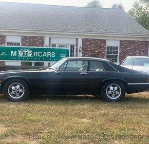 1984 Jaguar XJS for sale 101405589