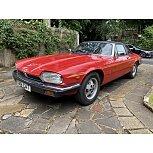 1985 Jaguar XJS for sale 101594643
