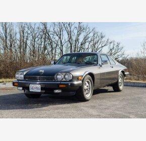 1986 Jaguar XJS V12 Coupe for sale 101249683