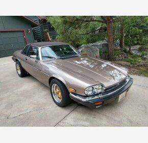 1986 Jaguar XJS V12 Coupe for sale 101362268