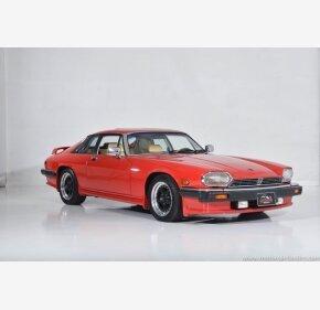 1986 Jaguar XJS for sale 101435899