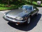 1986 Jaguar XJS V12 Coupe for sale 101564968