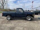 1987 Chevrolet Custom for sale 101353631