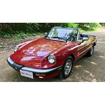 1988 Alfa Romeo Spider Graduate for sale 101199991