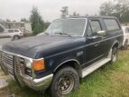 1988 Ford Bronco for sale 101560200
