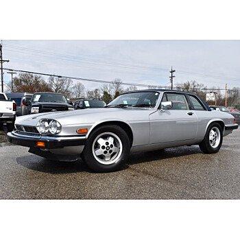 1988 Jaguar XJS for sale 101112310