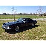 1988 Jaguar XJS for sale 101587441