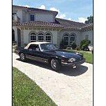 1988 Jaguar XJS for sale 101609226