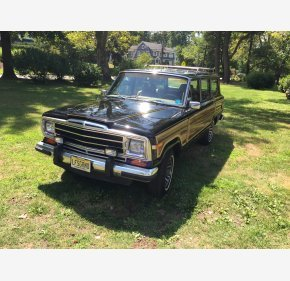 1988 Jeep Grand Wagoneer for sale 100784206