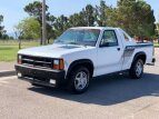 1989 Dodge Dakota for sale 101591716