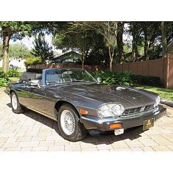 1989 Jaguar XJS V12 Convertible for sale 101402795