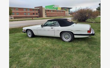 1989 Jaguar XJS V12 Convertible for sale 101408340