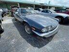 1989 Jaguar XJS for sale 101544689