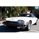 1989 Jaguar XJS V12 Coupe for sale 101617554