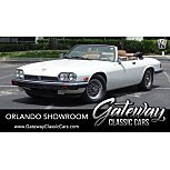 1989 Jaguar XJS V12 Convertible for sale 101618260