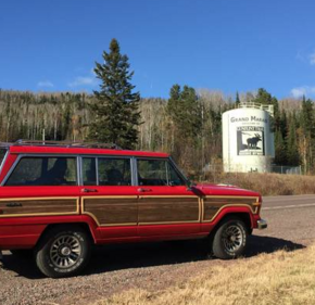 1989 Jeep Grand Wagoneer for sale 101347278