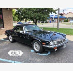 1990 Jaguar XJS for sale 101062354
