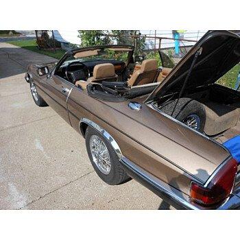 1990 Jaguar XJS for sale 101103253