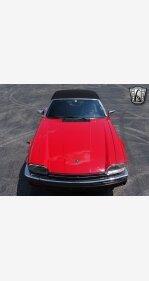 1990 Jaguar XJS V12 Convertible for sale 101152641