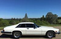1990 Jaguar XJS V12 Coupe for sale 101294318