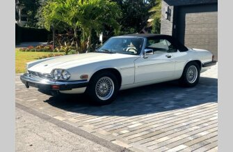 1990 Jaguar XJS V12 Convertible for sale 101294359