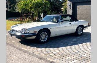 1990 Jaguar XJS for sale 101353702