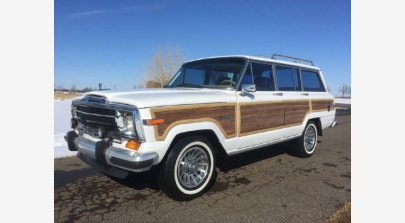 1990 Jeep Grand Wagoneer for sale 100976653