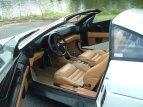 1991 Ferrari 348 TS for sale 101054716