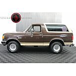 1991 Ford Bronco for sale 101579138