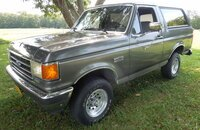 1991 Ford Bronco for sale 101218412