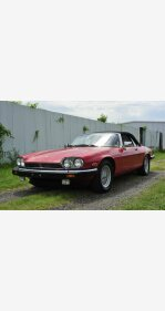 1991 Jaguar XJS V12 Convertible for sale 101176961
